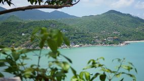Green tree leaves against the blue ocean and mountains in Sunny day stock footage