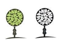 Green tree with leaves 3. Green tree with leaves.Illustration Royalty Free Stock Photo