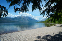 Green tree limbs frame a clear lake in Glacier. Royalty Free Stock Image