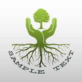 Green tree logo. On human hand with root. nature icon and ecology concept, vector illustration Royalty Free Stock Photography