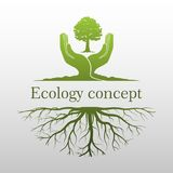 Green tree logo. On human hand with root. nature icon and ecology concept, vector illustration Stock Image
