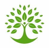 Green Tree Logo. Green tree isolated in white background Stock Images