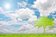 Green tree nature from grass with white background. Royalty Free Stock Photo