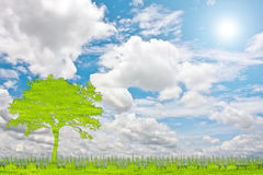 Green tree nature from grass with white background. Stock Photos