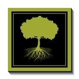 Green tree-nature Royalty Free Stock Photo
