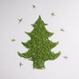 Green tree of the needles Royalty Free Stock Photo
