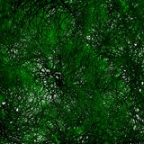Green Tree Organic Background Stock Photos