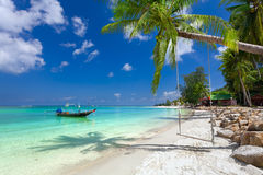 Green tree of a palm tree on the sandy sea beach with white sand Stock Photo