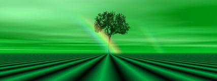 Green tree and rainbow Royalty Free Stock Photos
