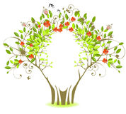 Green tree with red flowers. And birds Royalty Free Stock Photo