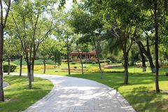 The green tree, the red house, the small road at the Sun Island Park. ,green trees. Green lawn, red flowers stock photo