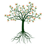 Green Tree and Roots. stock illustration