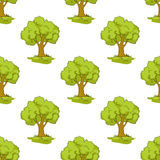 Green tree seamless background pattern Stock Images
