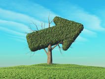 A green tree in the shape of an arrow Royalty Free Stock Image