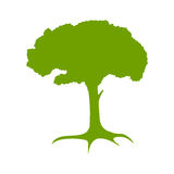 Green tree silhouette. Royalty Free Stock Photography
