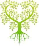 Green tree silhouette Stock Photos