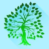 Green Tree Silhouette Stock Photo