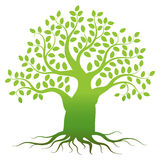 Green tree silhouette Royalty Free Stock Photos