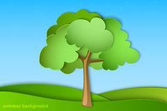 Green tree with summer Stock Photos
