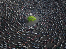 Green tree surrounded by cars Stock Images
