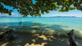 Green tree with swing and sea. Shore stock footage