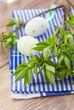 Green tree twigs and easter eggs Royalty Free Stock Image