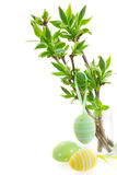Green tree twigs and easter eggs Stock Photo