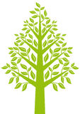 Green tree, vector Stock Photo