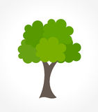 Green tree vector Royalty Free Stock Image