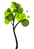 Green tree on white Royalty Free Stock Photo
