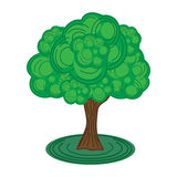 Green Tree Stock Photos