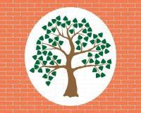 Green tree, wood, brick orange wall, decoration. Green tree with leaves on the orange brick wall, decoration and ornament Royalty Free Stock Photos