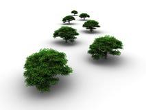 Green trees Royalty Free Stock Photos