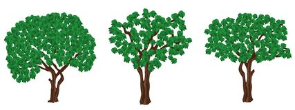 Green trees. Stock Photos