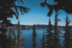 Green Trees Against Body of Water Photo Royalty Free Stock Photos