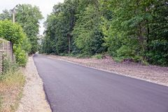 Green trees along an empty asphalt road Royalty Free Stock Photo