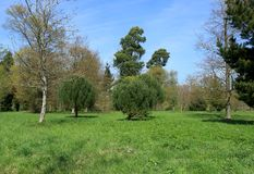 Free Green Trees And Blue Skies Of The Hever Countryside Stock Photos - 147443943