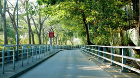 Green trees around the road at daytime. Green trees around the road with slow sign at daytime Royalty Free Stock Photography