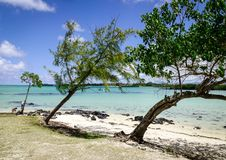 Seascape of Cap Malheureux, Mauritius. Green trees with blue sea in Cap Malheureux, Mauritius Stock Image