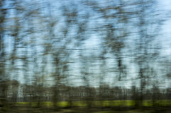 Green trees - a blurred window view from train in Royalty Free Stock Images