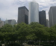 Green trees and buildings royalty free stock images