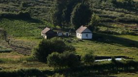 Two buildings are visible far away. Green trees and bushes are near the houses.There is a small lake on the meadow stock footage