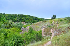 Green trees in a canyon against a cloudy sky background.  Royalty Free Stock Photos