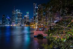 Green trees and city in night lights stock image