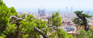 Green trees and cityscape of Barcelona Stock Photos