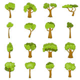Green trees icons set, cartoon style. Green trees icons set. Cartoon illustration of 16 green trees vector icons for web Royalty Free Stock Photos