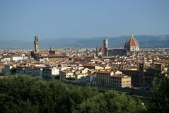 Green Trees In The City Of Florence, Tuscany, Italy Royalty Free Stock Images