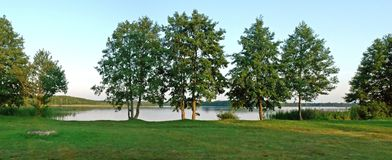 Green trees and the lake  at summer time Stock Photos