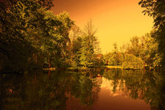 Green trees by the lake at sunset. Beautiful lake Royalty Free Stock Photography