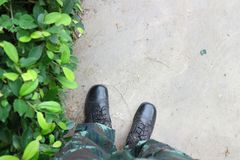 Green trees, military boots, and walkways royalty free stock photo